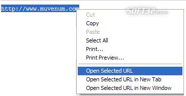 IE Open Selected URL Screenshot 2