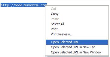 IE Open Selected URL Screenshot