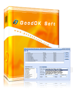 GoodOK Flash Video FLV Converter Screenshot 1