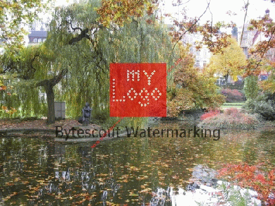 Watermarking SDK Screenshot