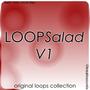 LOOPSalad V1 1