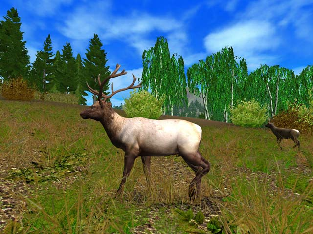 Hunting Unlimited 2009 Screenshot