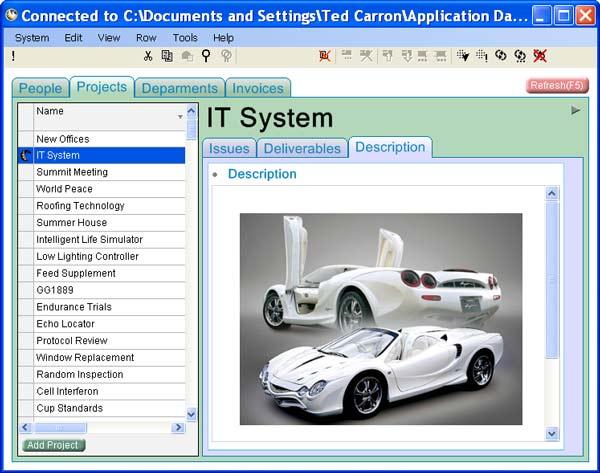 Datawasp Database Manager Screenshot 1