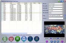 Tinysoar dvd to 3gp converter Screenshot