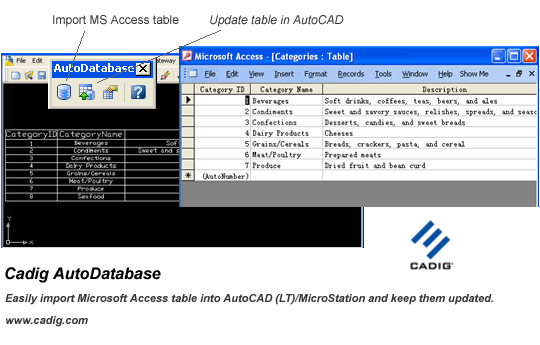 AutoCAD Access - AutoDatabase Screenshot