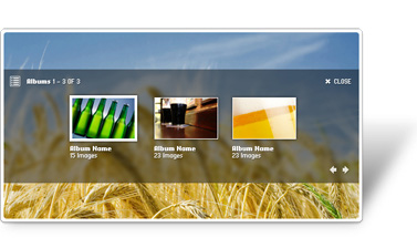 Zen Flash Gallery CS3 Component Screenshot