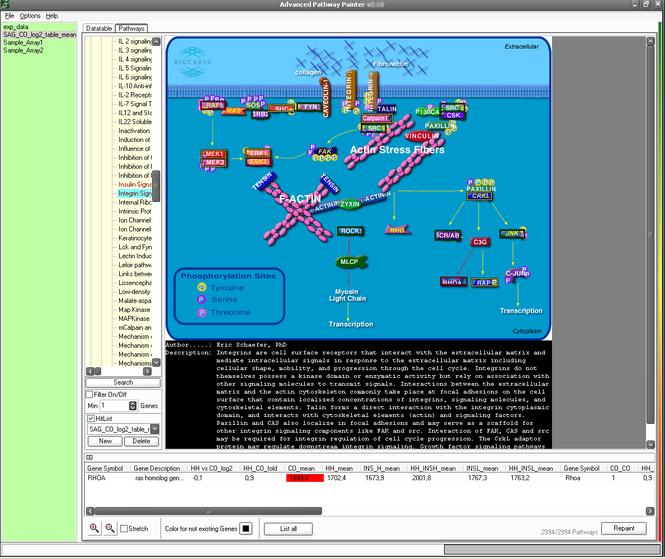 Advanced Pathway Painter Screenshot