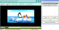 AnvSoft Web FLV Player Freeware 1