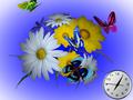 Wonderful Flowers 3D Screensaver 1