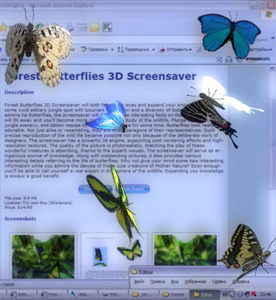 Desktop Butterflies 3D Screensaver Screenshot 1