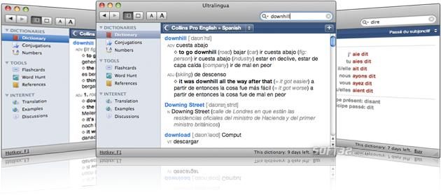 Collins Pro Italian-English Dictionary Screenshot 2