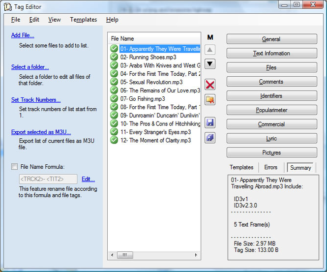 Professional Tag Editor (MP3/WMA) Screenshot