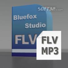 Bluefox FLV to MP3 Converter Screenshot 2