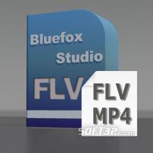 Bluefox FLV to MP4 Converter Screenshot 2