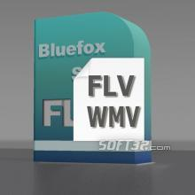 Bluefox FLV to WMV Converter Screenshot 2