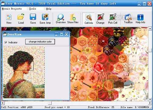 Easy Mosaic Pro Screenshot 2