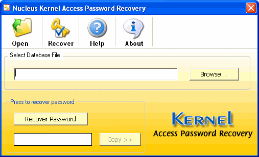 Access Password Recovery PROFESSIONAL Screenshot