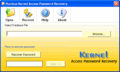Access Password Recovery PROFESSIONAL 1
