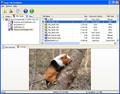 Easy NTFS File Undelete 1