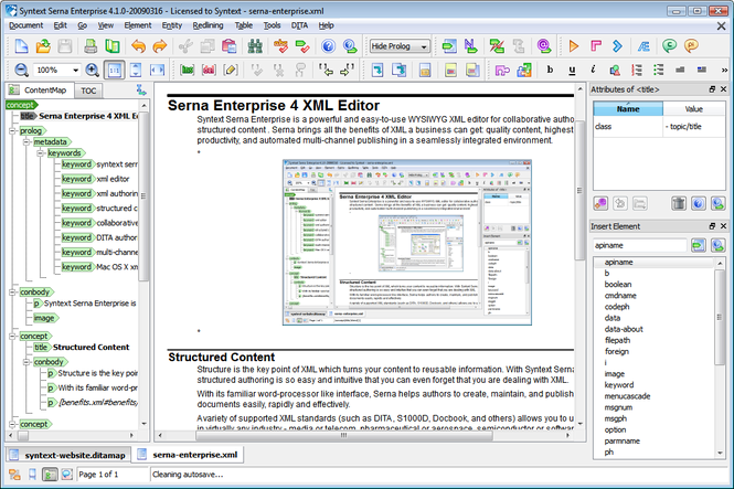 Serna Enterprise for Windows Screenshot