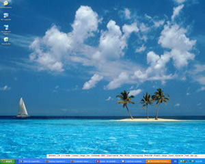 Desktop Organizer Screenshot