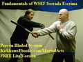 FREE Martial Arts Ebook Knife and Stick 1
