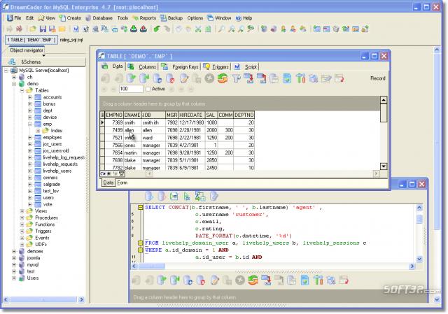 DreamCoder for MySQL Enterprise Screenshot 3