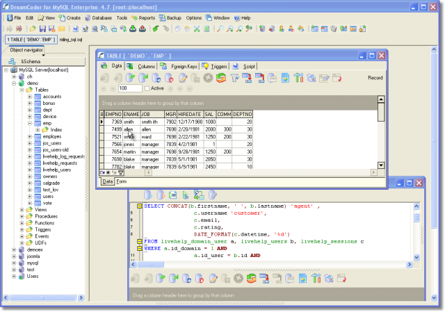 DreamCoder for MySQL Enterprise Screenshot