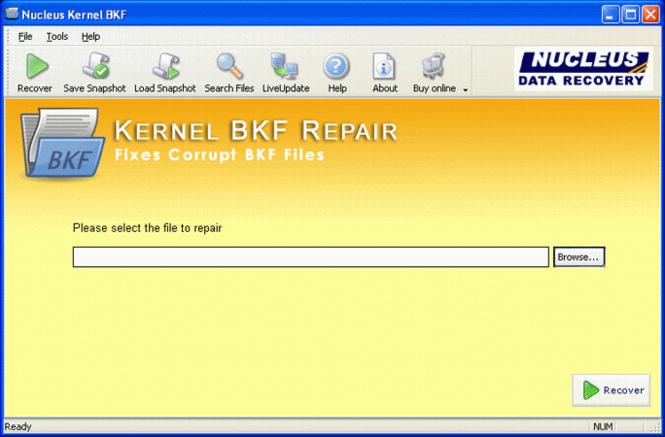 BKF Recovery Screenshot