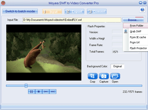 Moyea SWF to Video Converter Pro Screenshot