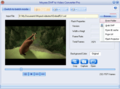 Moyea SWF to Video Converter Pro 1