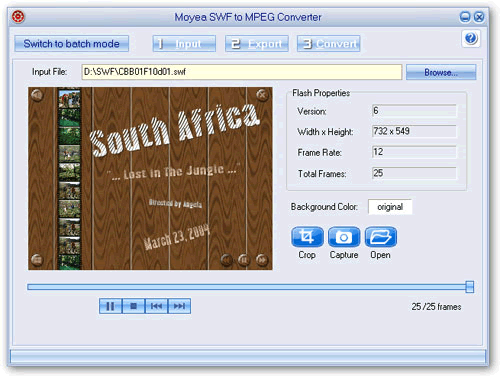 Moyea SWF to MPEG Converter Screenshot 1