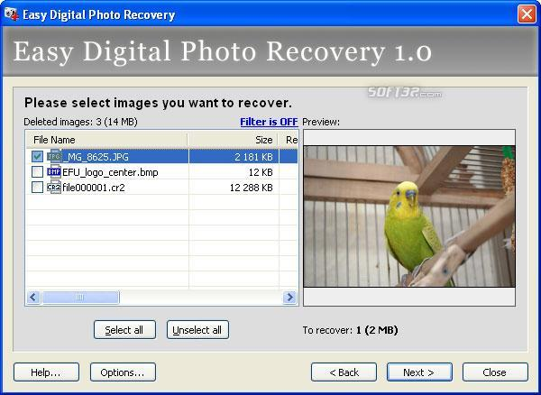 Easy Digital Photo Recovery Screenshot 2