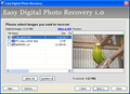 Easy Digital Photo Recovery 1