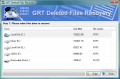 GRT Deleted Files Recovery 2