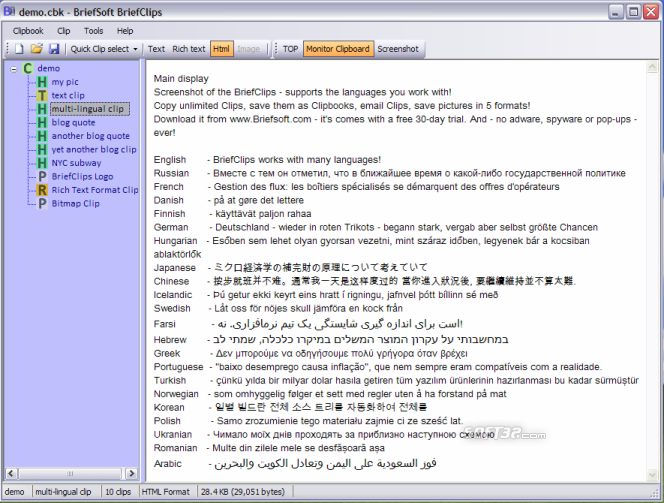 BriefClips Clipboard Extender Unicode Screenshot 3