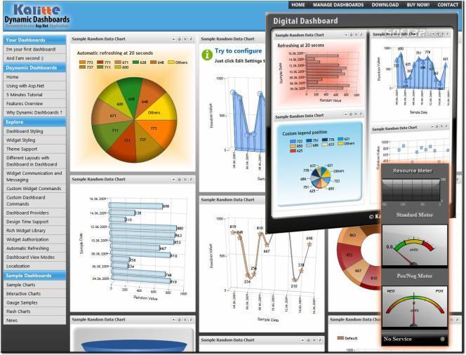 Asp.Net Dashboard and Widget Toolkit Screenshot 2
