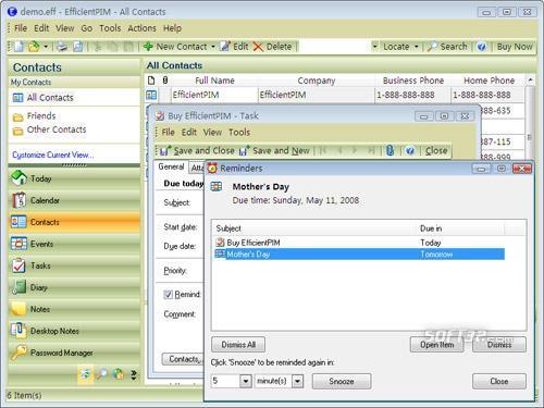 EfficientPIM Free Screenshot 3