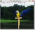 AV Digital Talking Parrot 1