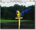 AV Digital Talking Parrot 1