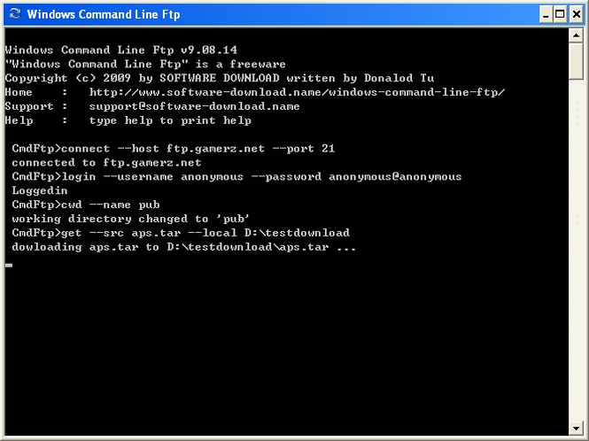 Windows Command Line Ftp Screenshot