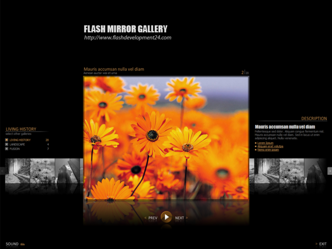 Flash Mirror Gallery Screenshot