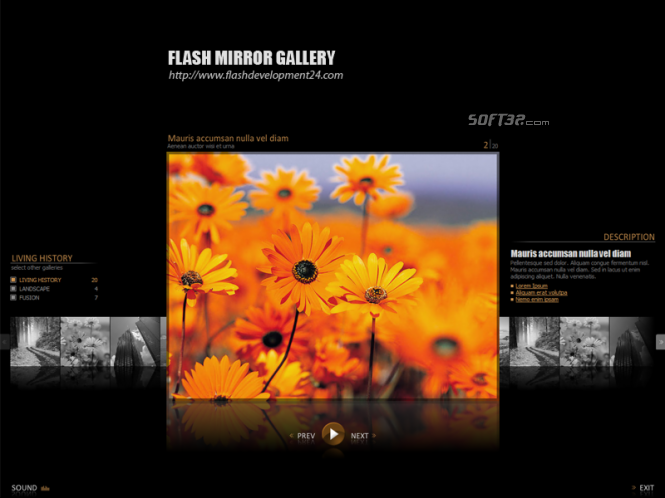 Flash Mirror Gallery Screenshot 3