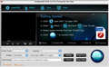 4Videosoft DVD to FLV Converter for Mac 1