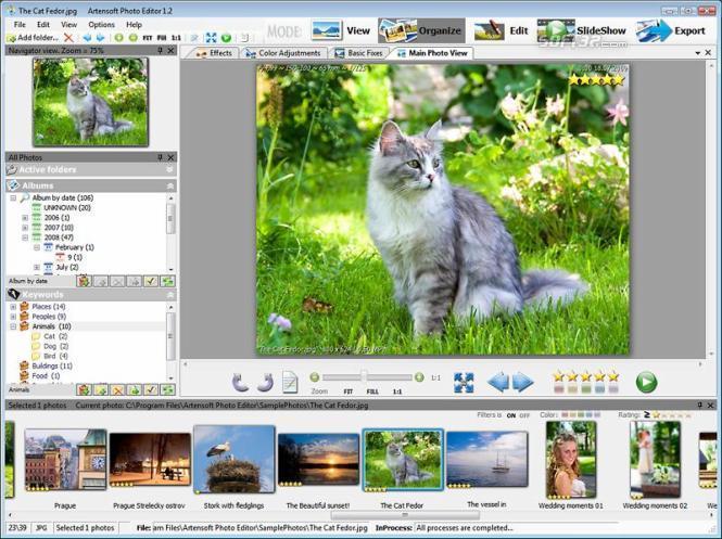 Artensoft Photo Editor Screenshot 2
