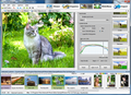 Artensoft Photo Editor 1