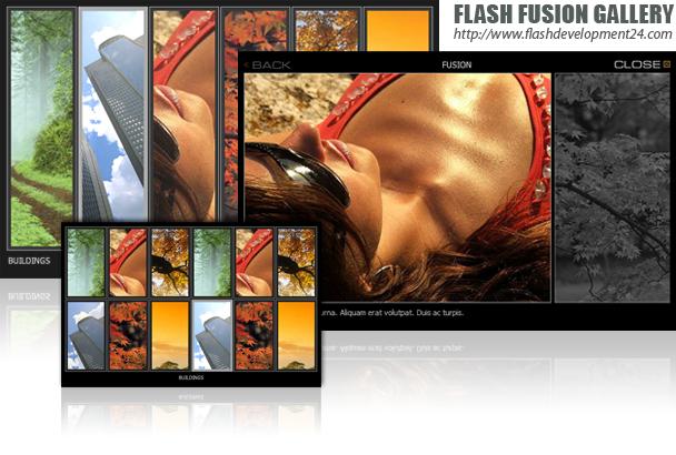 Flash Fusion Gallery Screenshot
