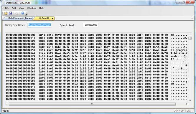 DataProbe Screenshot