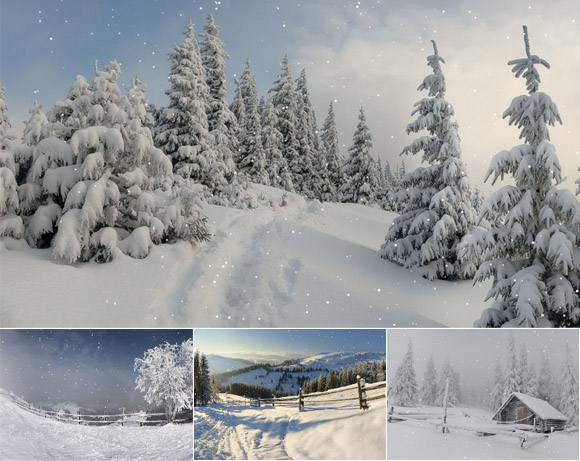Animated Winterscapes Screenshot
