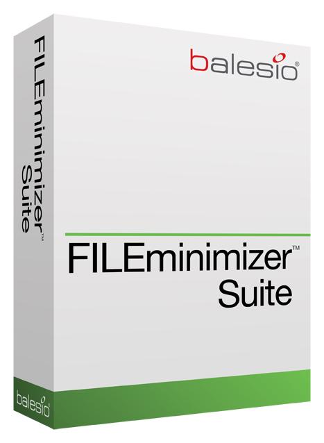 FILEminimizer Suite Screenshot 1